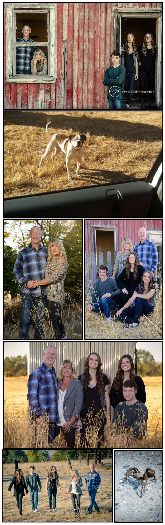 Michele Michaels Photography-Crews Family